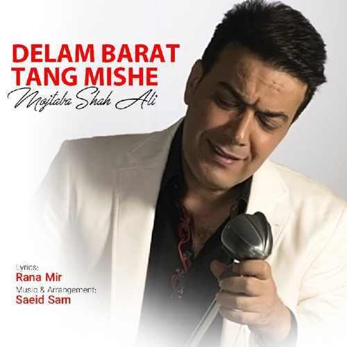 Download Ahang مجتبی شاه علی دلم برات تنگ شده
