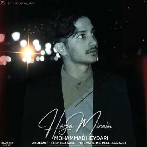 Download Ahang محمد حیدری هرجا میرم