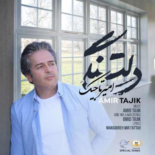 Download Ahang امیر تاجیک دلتنگی
