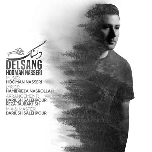 Download Ahang هومن ناصری دلسنگ