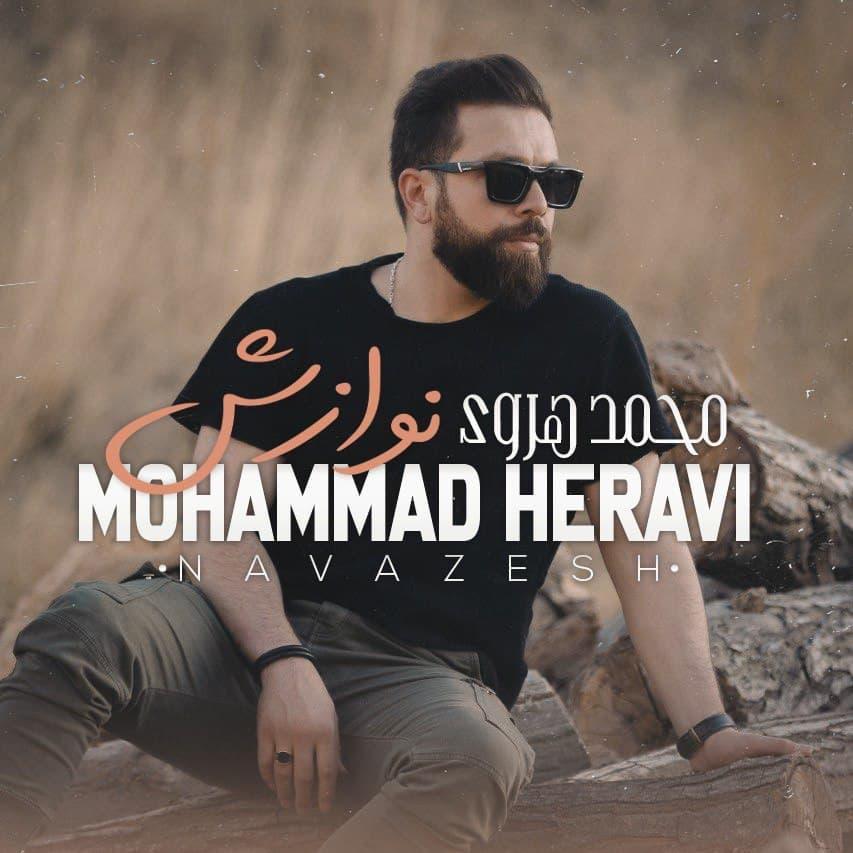 Download Ahang محمد هروی نوازش