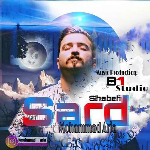 Download Ahang محمد آریا شب سرد